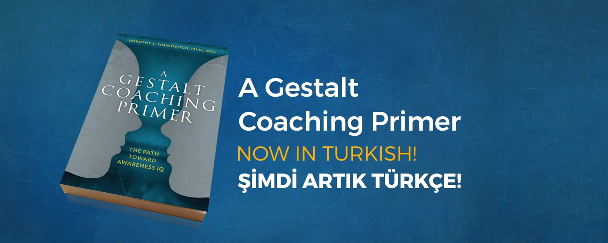 A-Gestalt-Coaching-Primer-Book-Slider